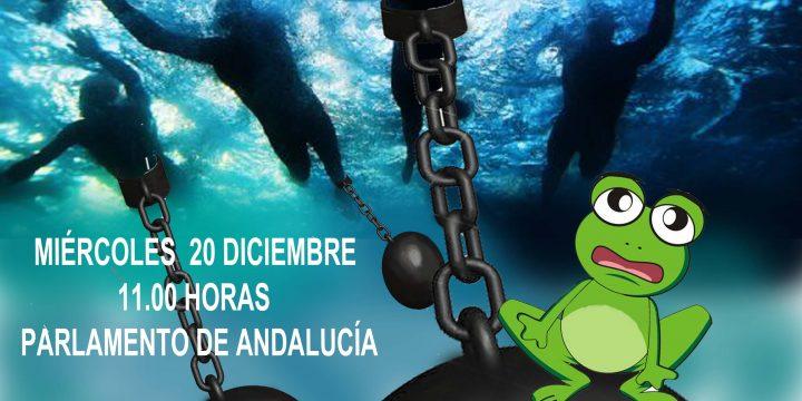 Concentración en la puerta del Parlamento de Andalucía