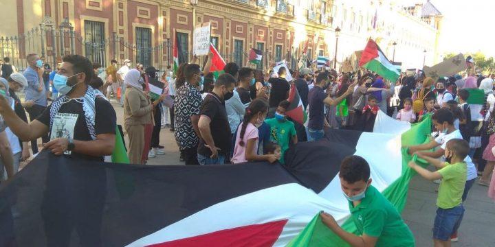 La Universidad de Sevilla debe condenar la violencia del estado de Israel